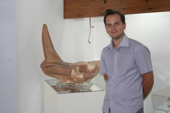 Череп доисторического носорога