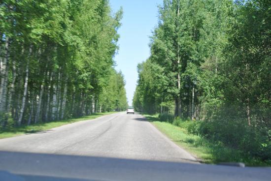 Проехали Толоконцево и далее двигаемся в сторону трассы на Городец