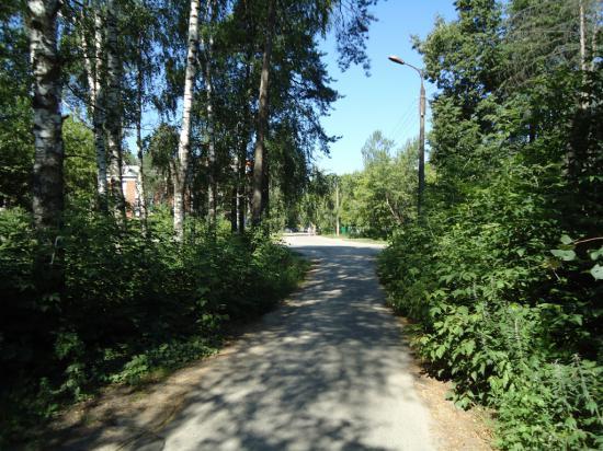 Дорога на кладбище Дзержинска