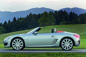 Volkswagen отказывается от родстера